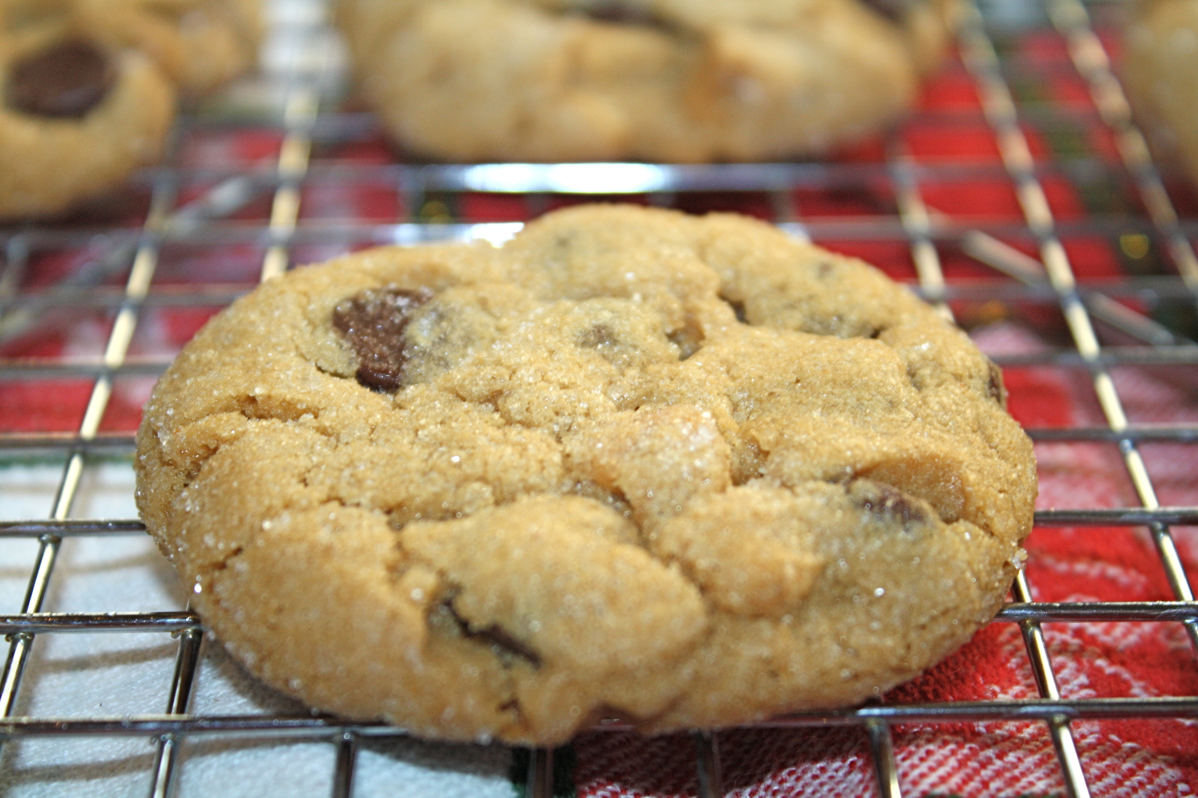 Peanut Butter Chocolate Chip Cookies – The Quotable Kitchen